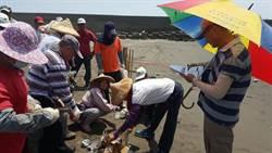 環保署:海岸垃圾寶特瓶最多 菸蒂也不少