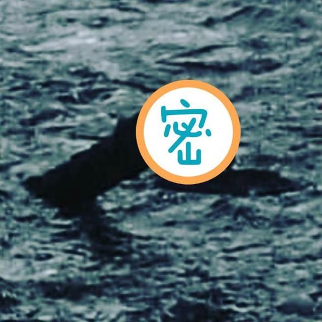 又拍到尼斯湖水怪? 神秘「新造型」驚人曝光!(圖/翻攝自《太陽報》)