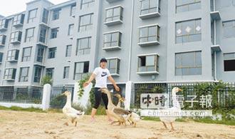 荷澤房市限售令解鎖 廣州跟進