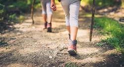 影》爬山是最笨運動?醫師破解膝關節退化殘酷真相
