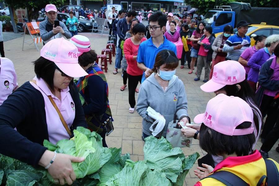 立委何欣純舉辦集發票兌換高麗菜活動,盼挺菜農兼做公益。(林欣儀攝)