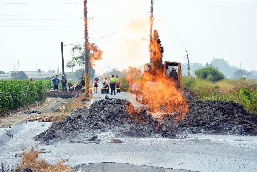圖為去年12月底,萬丹泥火山在農路中央噴發,已是當年第2次。(林和生攝)
