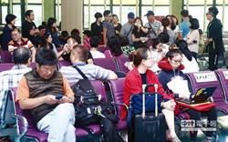 史上最大旅行團逃脫 旅行公會擬與立委提集體訴訟