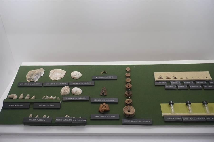 館內收藏逾萬件台灣史前文化文物。(李其樺攝)