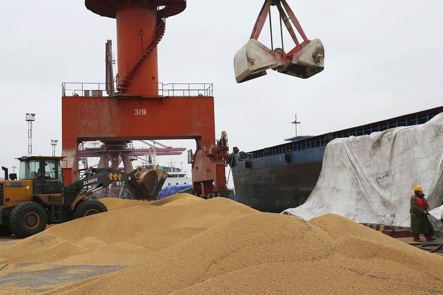 美中貿易戰自7月開始以來,中國開始向其他國家購入大量的大豆作為替代。圖為中國大陸江蘇省南通市港口正在卸下由巴西進口的大豆。(圖/美聯社)
