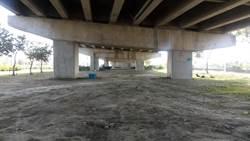 民代力促快速道橋下闢休閒空間