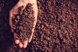研究:吃土比減肥藥有效 網笑真的要吃了