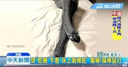 韓國瑜「穿襪睡」模仿風 穿「蛇襪」遭打傷腿