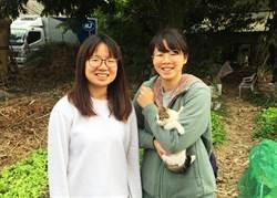 小貓「如意」新寵兒 引來跨年同學會