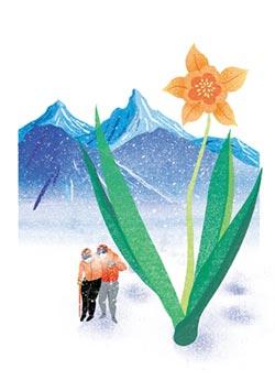 第39屆旺旺時報文學獎-雪線 1