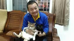 徐永強撿回2隻流浪貓 成了媽媽開心果