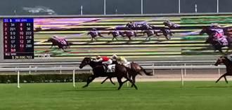 影》高雄觀光拚賽馬產業?考察香港馬場玩法大揭密