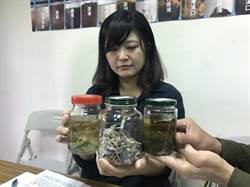 全台海域漂浮塑膠微粒 環團籲政府啟動調查