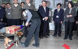 視察金門防疫非洲豬瘟 蔡英文:要展現台灣人的志氣
