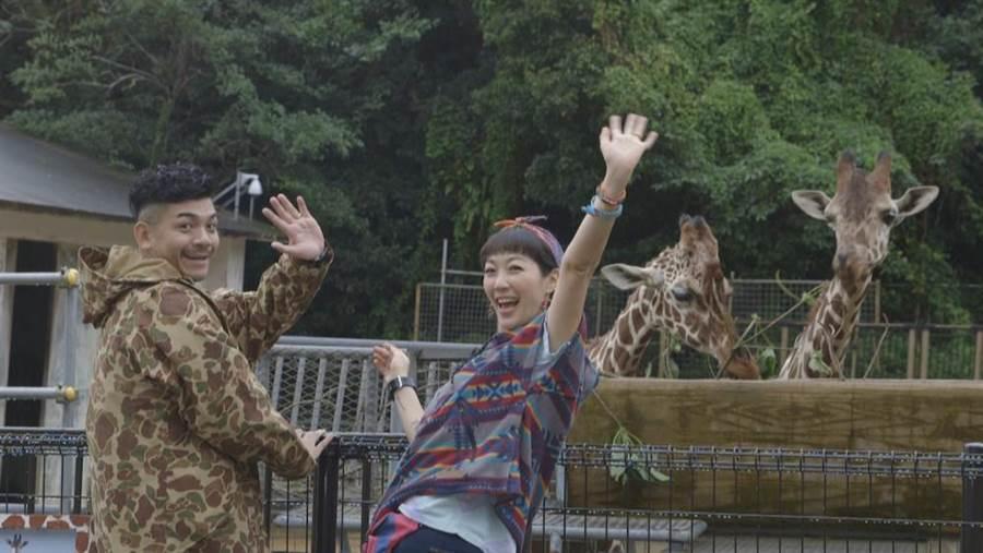 Gigi與史丹利重溫兒時回憶沖繩遊動物園。(圖片提供:艾迪昇)