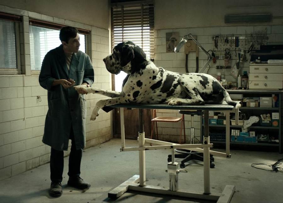 男主角馬切羅無論多凶猛的狗都能馴服。(捷傑提供)