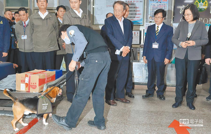 蔡英文總統(右)4日赴金門,巡視非洲豬瘟的防疫措施,在機場海關觀看防疫人員在緝毒犬協助下,對入境旅客行李進行防疫檢查。(鄭任南攝)