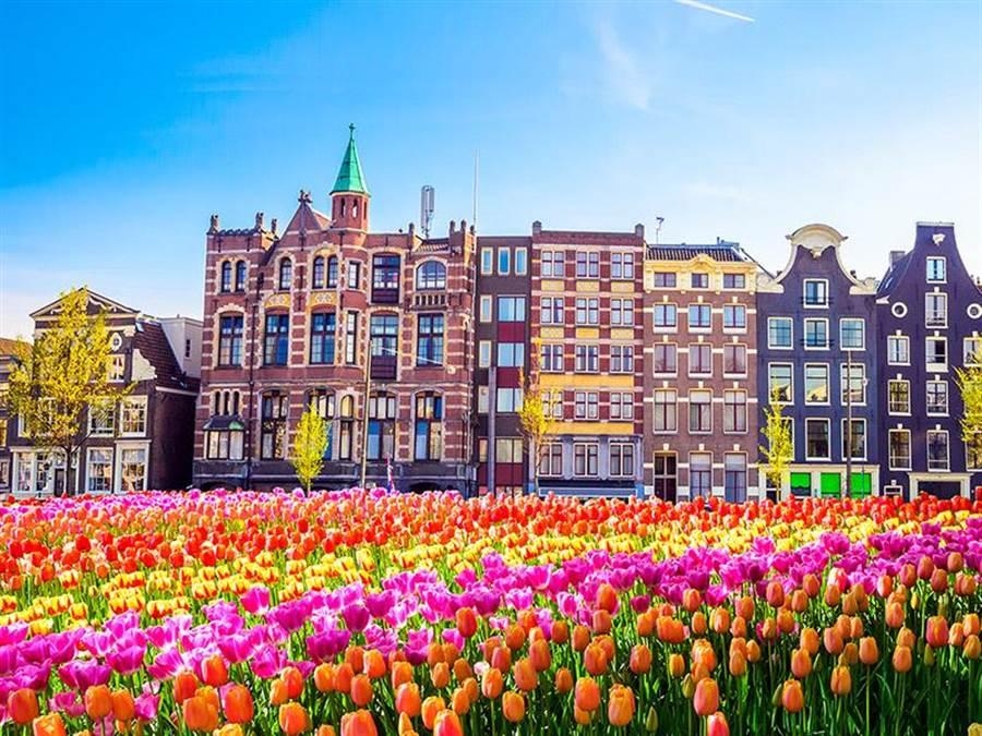 在歐洲荷蘭、土耳其的鬱金香季期間,荷蘭阿姆斯特丹的平均含稅票價較土耳其伊斯坦堡便宜5000元左右。(易遊網提供)