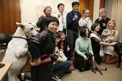 動保團體籲飼主年節期間打理好寵物需求