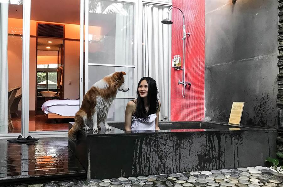 台中正妹莊珺涵帶著毛孩「布布」進住鹿鳴溫泉酒店的寵物溫泉客房,享受泡湯樂趣。(莊哲權攝)