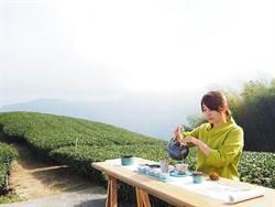 京都嵐山竹林在台灣?這秘境免費體驗阿里山茶席