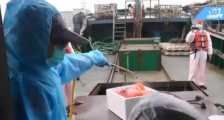 來自中國大陸的越界船隻,上頭載有10公斤豬肉,檢疫人員全副武裝將豬肉進行消毒。(圖/中天新聞)