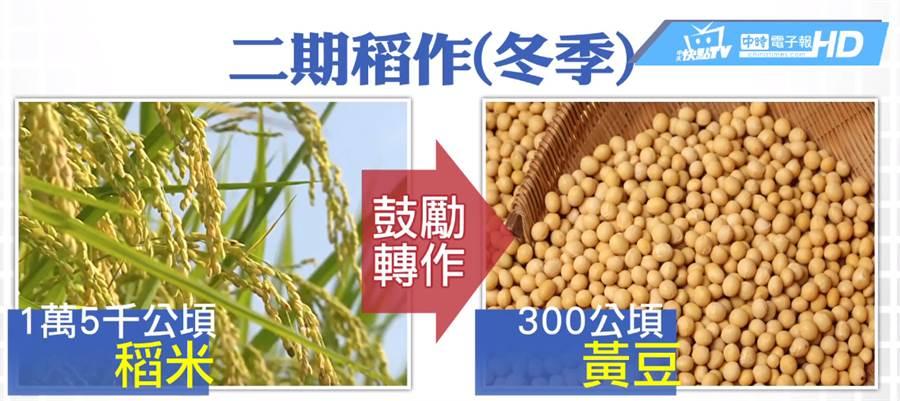 黃豆產值高、成本低,雲林地方農會今年開始鼓勵農民種植黃豆。
