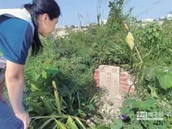 百年古墓竟遭政府剷平 網怒批:DPP彰化輸掉剛好而已!