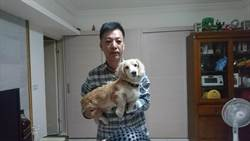 不願毛孩再從手上病故 他花大錢照顧愛犬