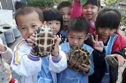 溪州幼兒園圳寮班養班龜 慢活息性感染小朋友