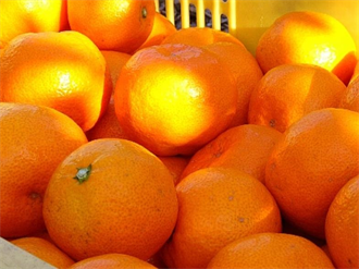 補骨第一名水果!每天吃可降低9成骨鬆風險