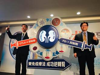 雙免疫療法問世  腎癌一線治療新選擇