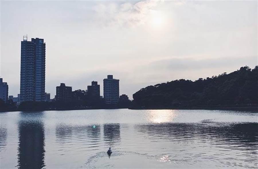 出自Taylor愛排名Blog,台北市內湖區的碧湖公園一景。(湖泊相片)