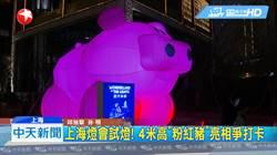 上海燈會試燈! 四米高「粉紅豬」亮相民眾爭打卡