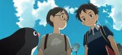 作家實現童年幻想,追尋企鵝公路