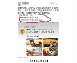 華為手機遭爆 系統疑自動刪除Twitter下載照片