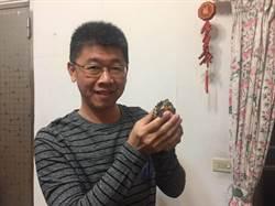 烏龜「ㄍ一ㄚㄍ一ㄚ」超可愛療育主人