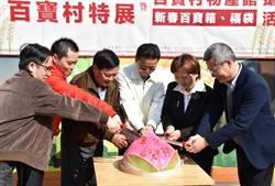 彰化百寶村特展 副縣長預告「銅梁火龍」元宵造訪花在彰化