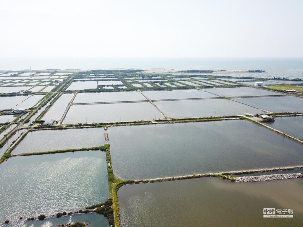 透過「漁電共生」可利用太陽能建設資金,重新整頓漁塭並引進循環水設施及智慧養殖等新型態養殖技術,促進傳統養殖漁業升級。圖/臺鹽綠能提供