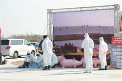 「希望只是白忙一場」嘉縣進行非洲豬瘟疫情演習