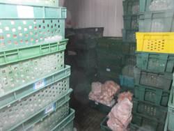製售逾期原料 後埔戰鬥雞排工廠遭停業
