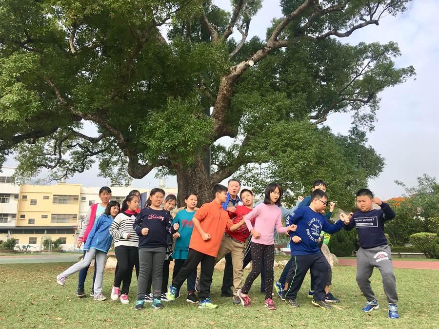 興隆國小老樟樹已有近千年歷史,3月17將作為路跑活動起點。(何冠嫻攝)