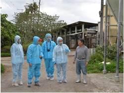 農委會重申:若發生非洲豬瘟 主動通報撲殺全額補償