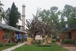 區公所推一日遊 體驗善化農村風光