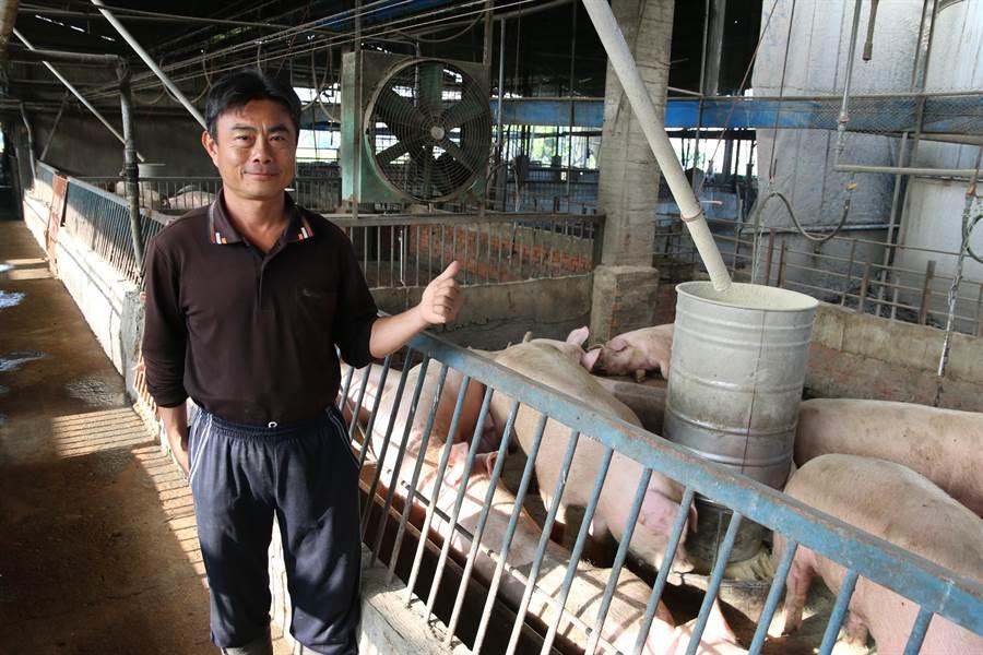 48歲的林清平投入綠色循環養豬工作,利用沼氣發電,盼讓養豬工作更環保。(林欣儀攝)
