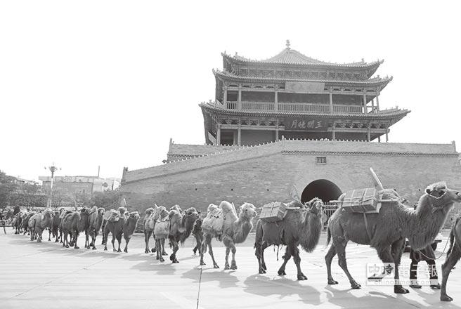 駱駝商隊。(中新社資料照片)