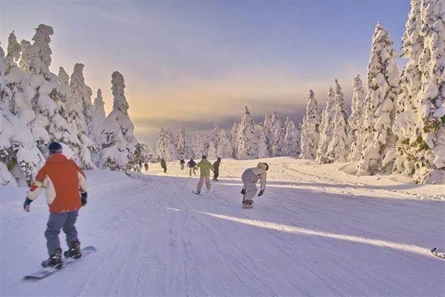 日本東北美麗雪景,可一邊滑冰欣賞美景。(達志影像/shutterstock提供)