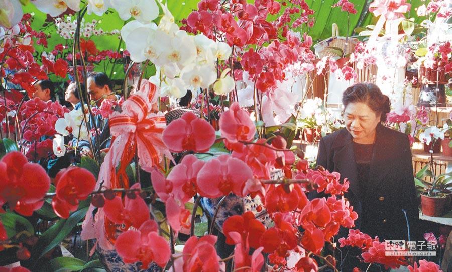 圖為假日花市美麗的蝴蝶蘭。(本報資料照片)