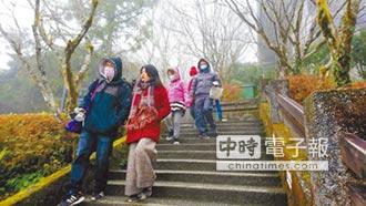太平山莊上千遊客等雪