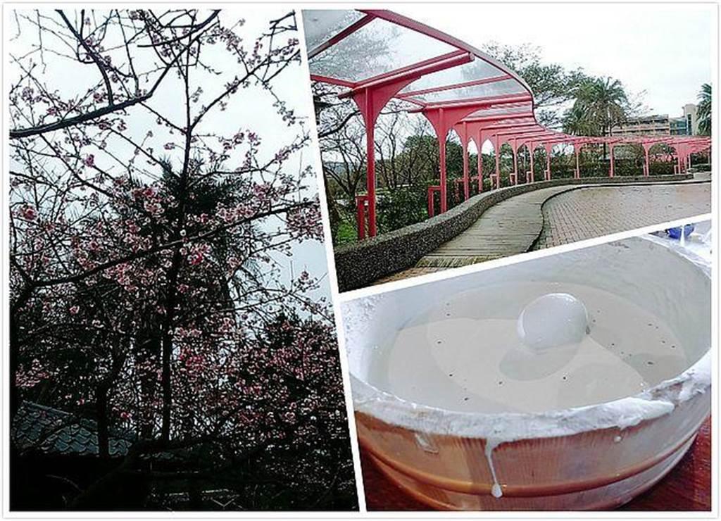 溫泉渡假酒店內春天可賞櫻花,還有特色火山泥溫泉蛋可DIY。